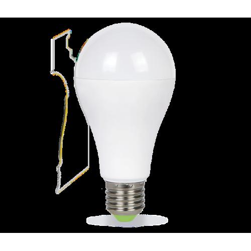 LED-A60-standard 20
