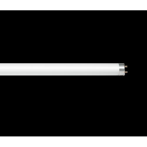 LED-T8-standard 24 1500мм